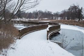 winter walk-22 small