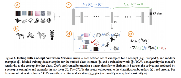 """The """"Testing with Concept Activation Vectors"""" for interpretable machine learning illustrated"""