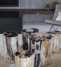 Custom Petrified Wood Tables in Solana Beach, CA & San Diego