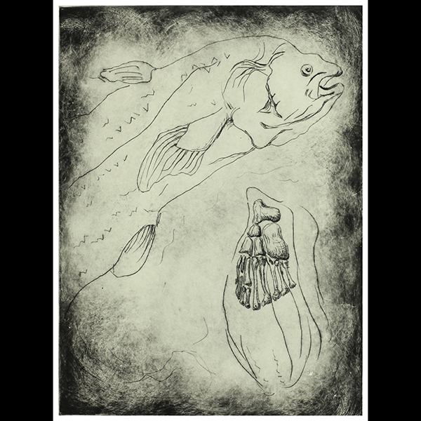 By: Diane Stemper Title: Specimen Coelacanth, 2013 Medium: Intaglio