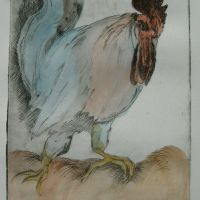 Title: Angry Cock By: Doug Fiely Size: 5 x 8 in Medium: hand colored etching