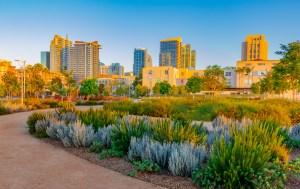 A downtown San Diego park features drought-tolerant plants.