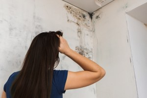 A woman looks at mold growing down the corner of a wall.
