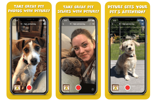 "PETURE app creates ""Post Worthy Pictures of Pets"""