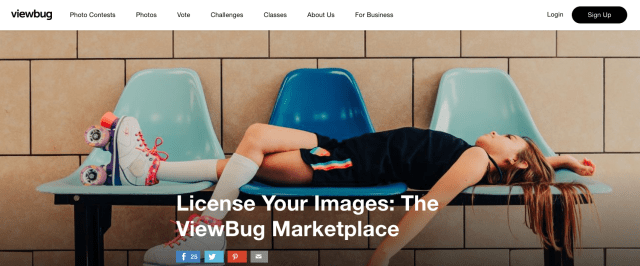 ViewBug launches Marketplace, partners with Canva