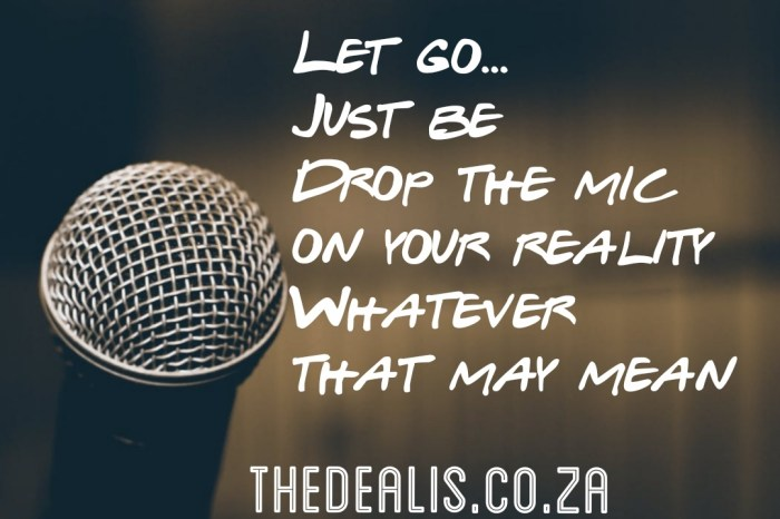 thedealis.co.za_i dropped the mic