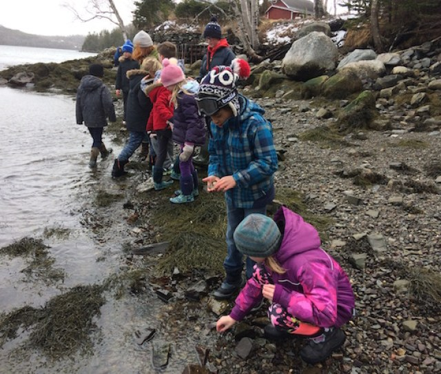 Hands On Environmental Education Programs