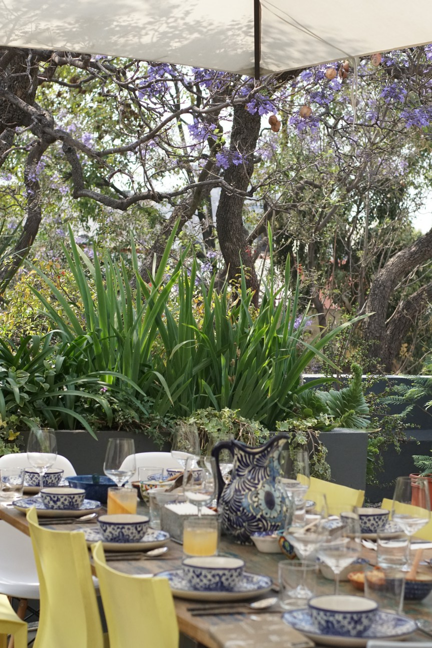 Travel: Casa Jacaranda, A Must-Do Culinary Experience in Mexico City