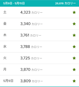 fitbitカロリー