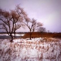 nantucket-in-winter