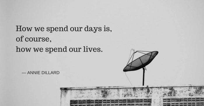 How we spend our days is,of course,how we spend our lives. - Annie Dillard