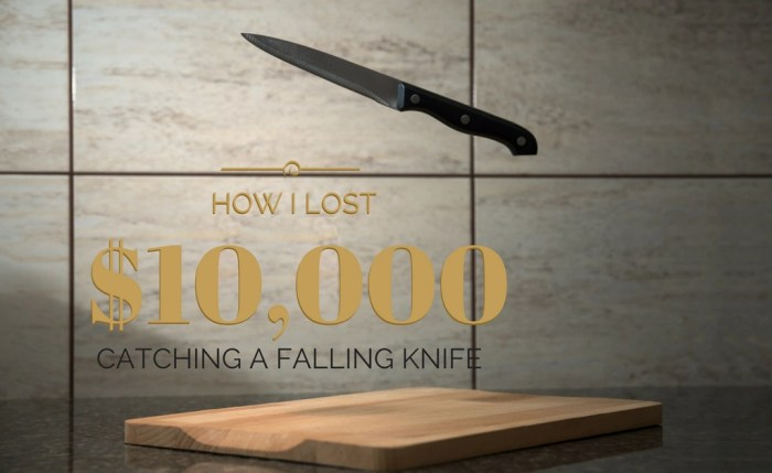 The Worst Investment Ever: How I Lost $10,000 Catching a Falling Knife