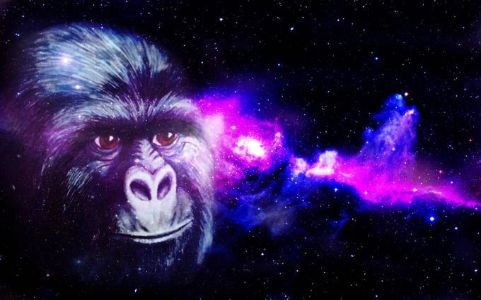the law of attraction alternate explanation 1: mental gorillas