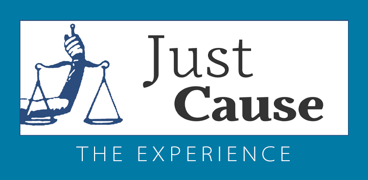 Just Cause: The Experience