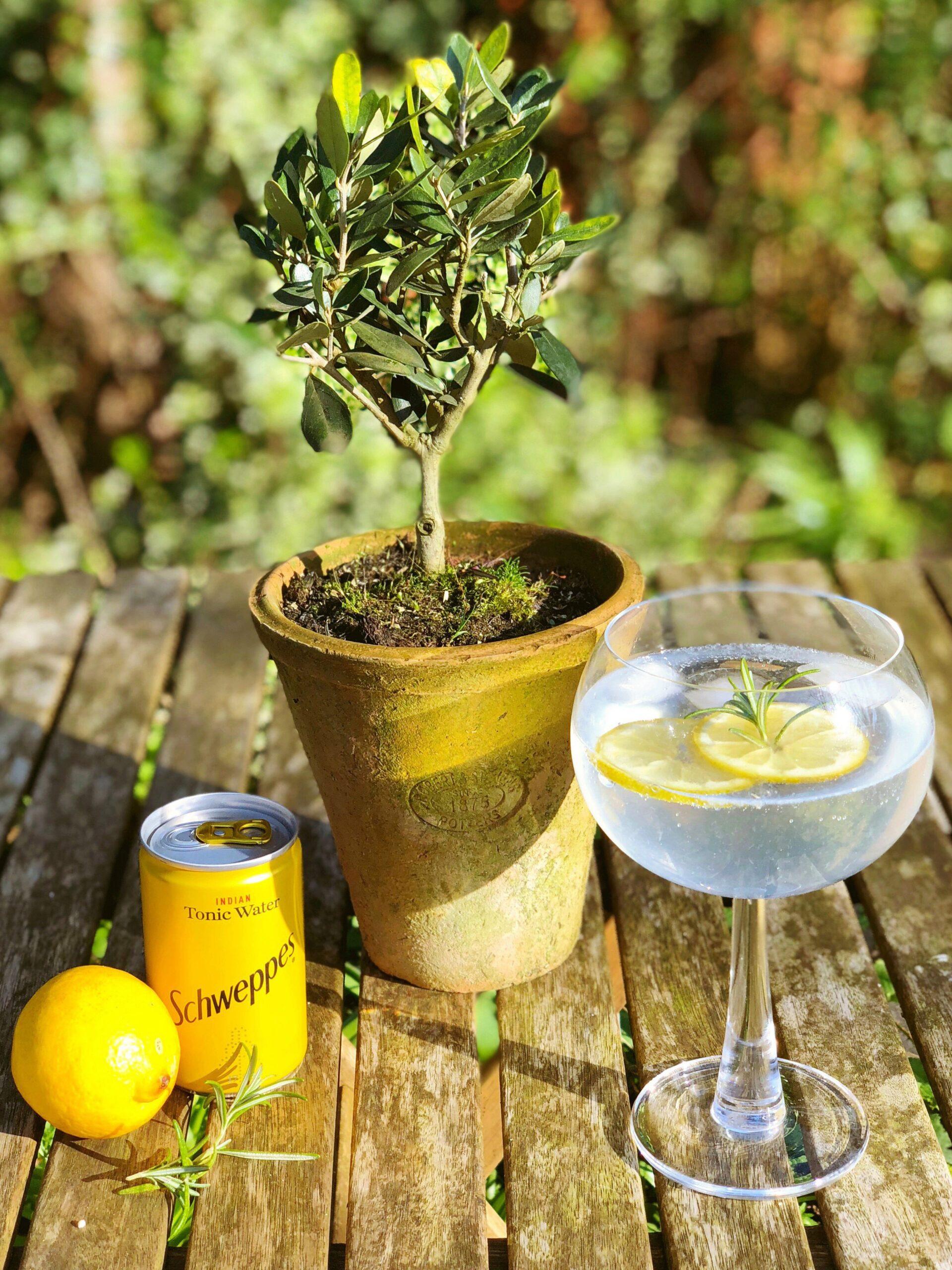 Rosemary and Lemon Botanical Gin