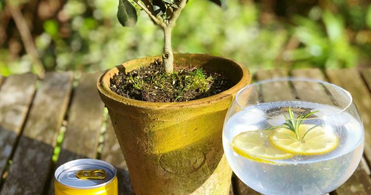 Rosemary and Lemon Botanical Gin