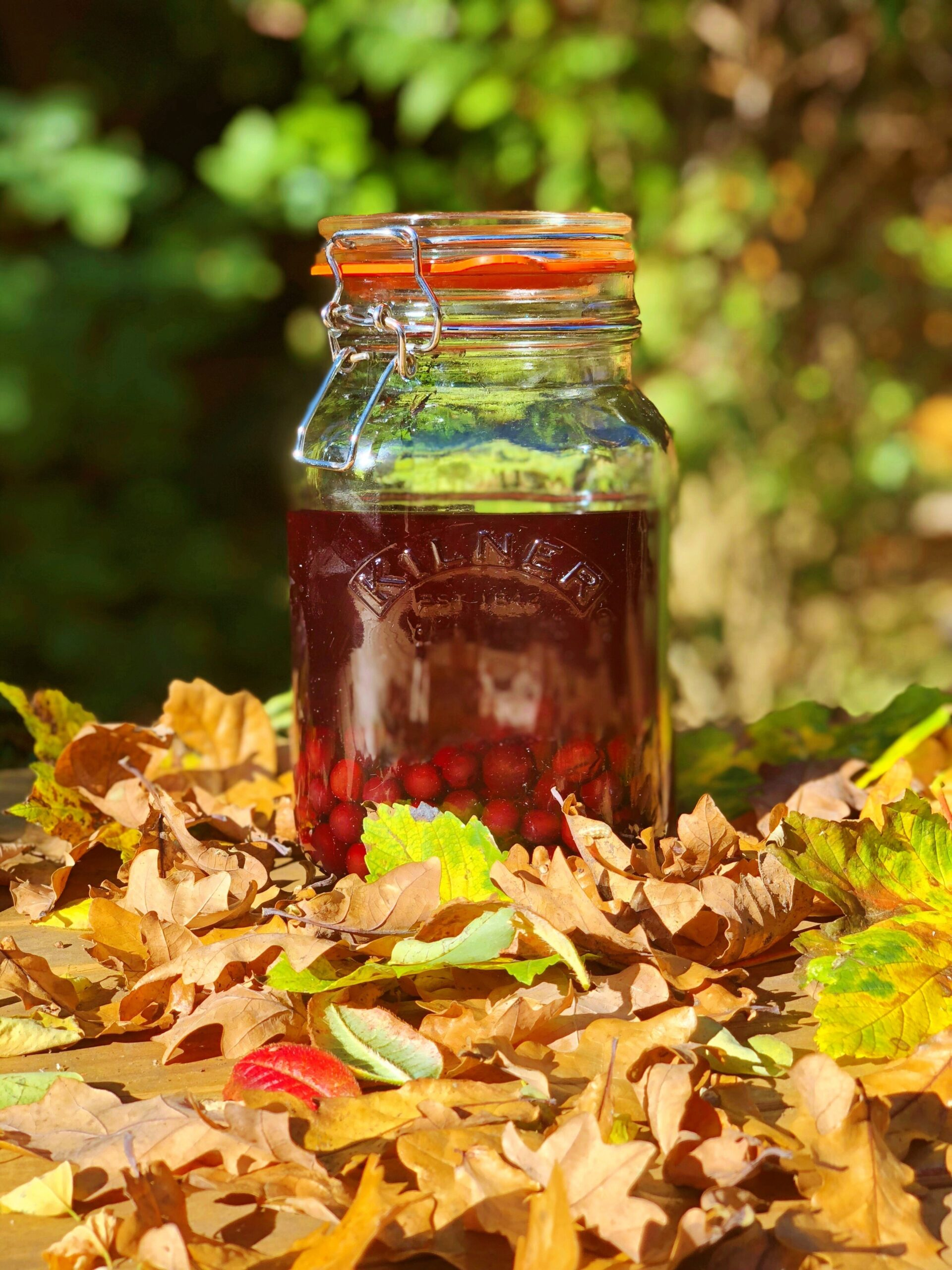 Homemade Sloe Gin