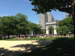 Sun-bathing in a park!