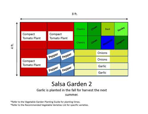 small resolution of recommended vegetable varieties if