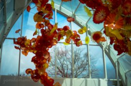 chihuly-35a