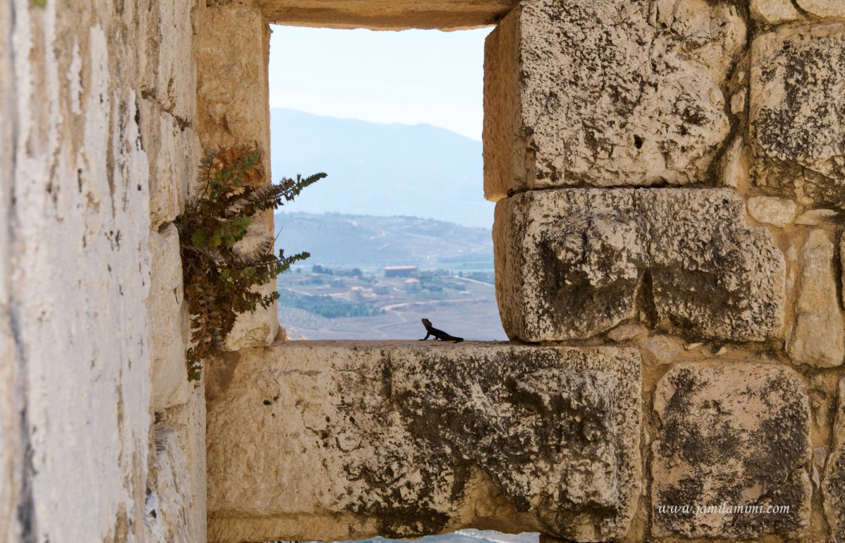 10 days in Lebanon (day 4) Nabatieh Beaufort Castle