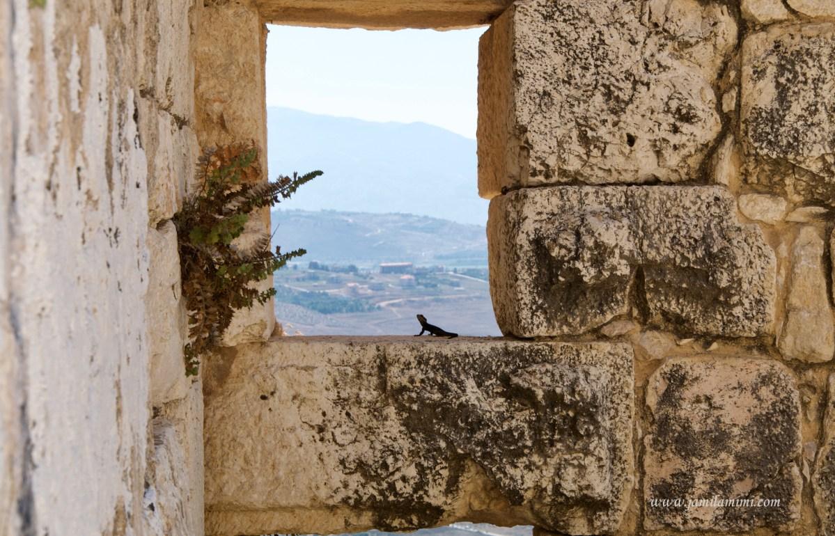 10 days in Lebanon (day 4) Nabatieh Beaufort Castle
