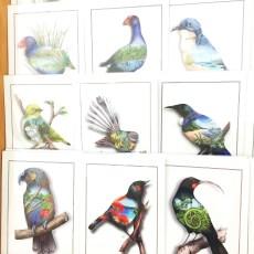 NZ Bird Prints - Sophie Blokker