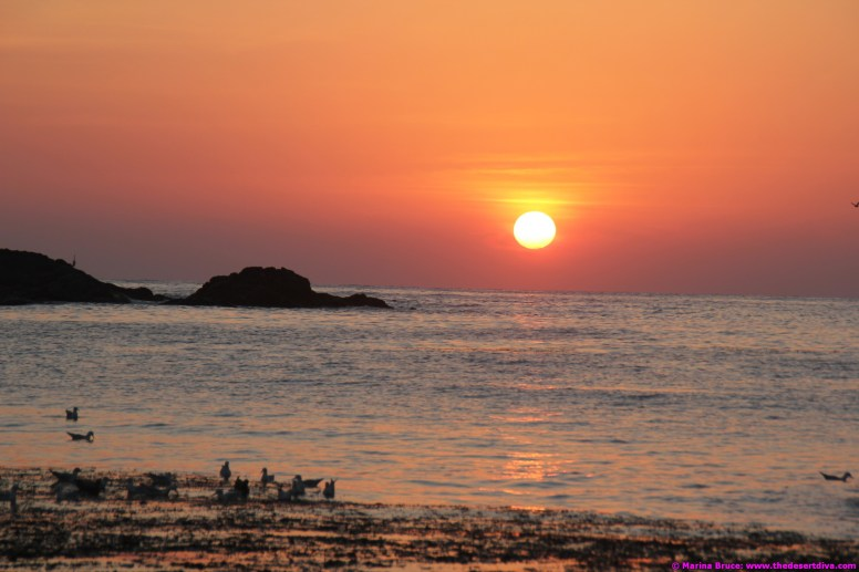 Sunrise on Christmas Eve - Fisherman's Beach