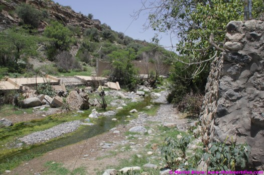 still water flowing in this small wadi