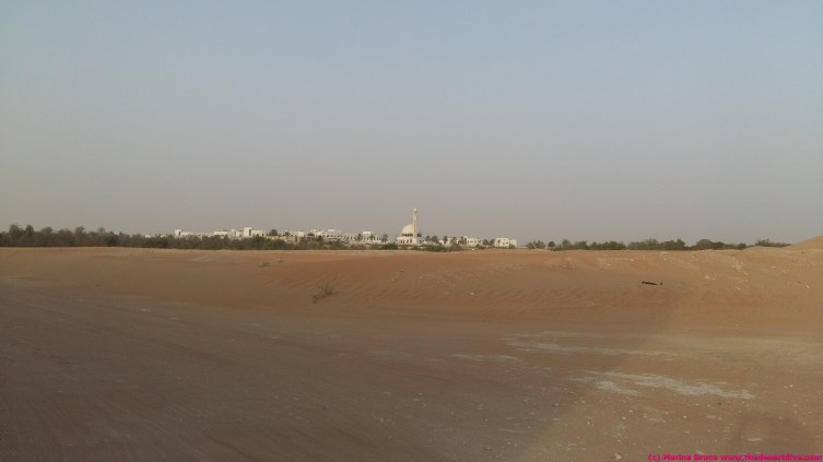 Al Gharbia hospital