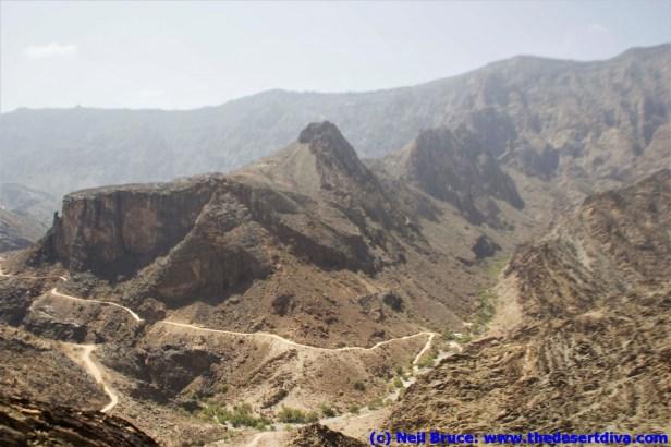 wadibaniauf037