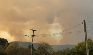 Tasman Fire Wakefield 2019 Alice Lake-Hammond