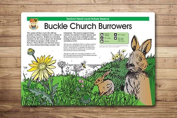 Countryside interpretation panel design with illustrations