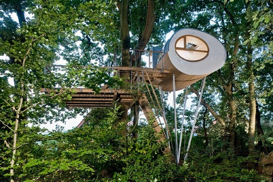 Cool Tree House Designs From Expert Baumraum