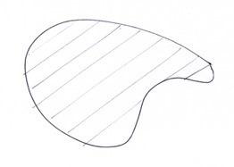 Random-shape-with-hachure2