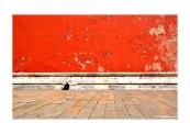 Forbidden City by Yolanda van der Mescht