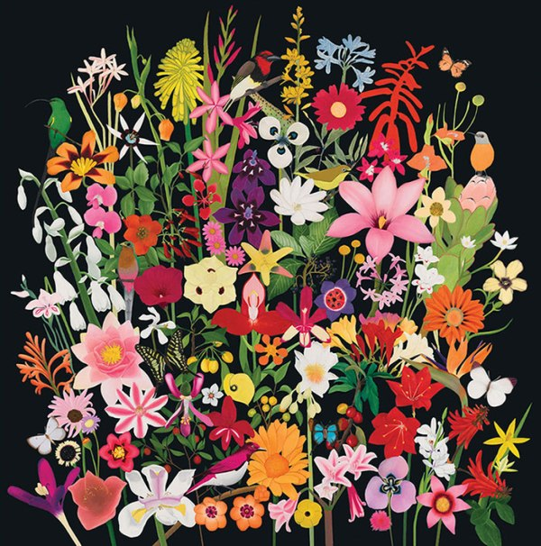 MyFavouriteColour-SA-Wildflower-Birds-and-Butterflies-Design2