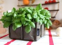 BACSAC Planter Bag (4)