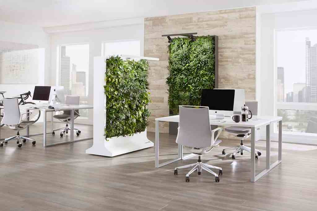 Climate Office Hedge Elements are plant walls of philodendron that can be equipped with acoustically-effective filling for sound absorption that is made of recycling material.