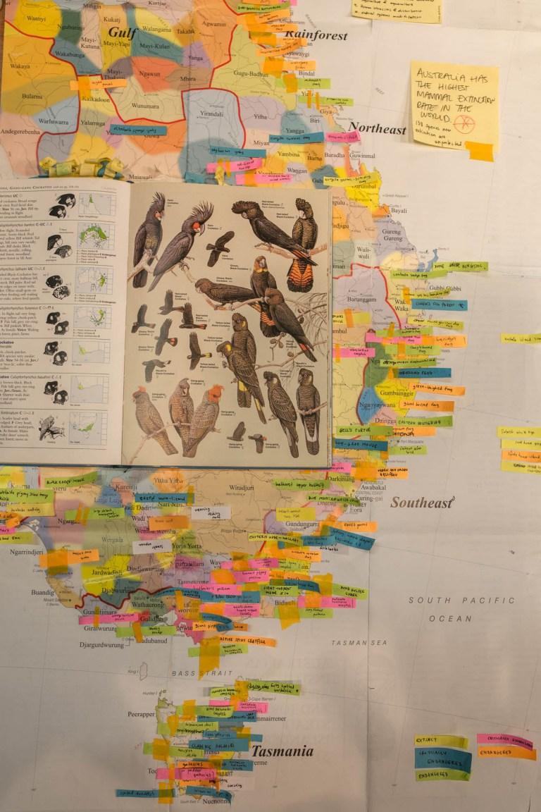 Egg Picnic birding map for Future Nature exhibition. Photo: Vincent Buret