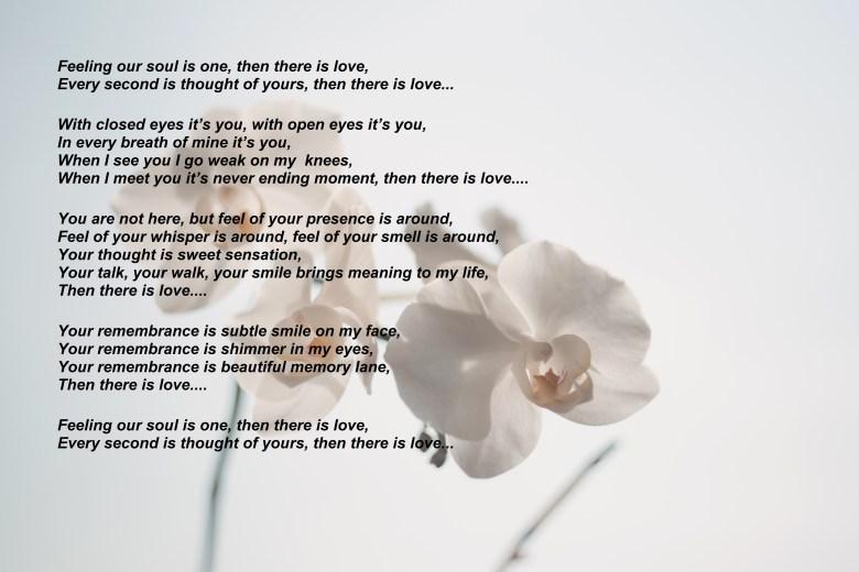 beautiful-bloom-blooming-173665