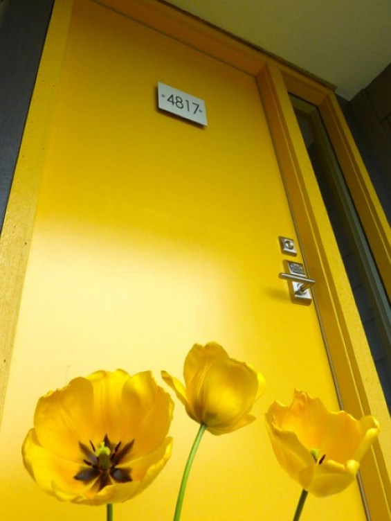 dreadful yellow door paint #frontdoorcolor #frontdoorpaintcolor #paintcolor