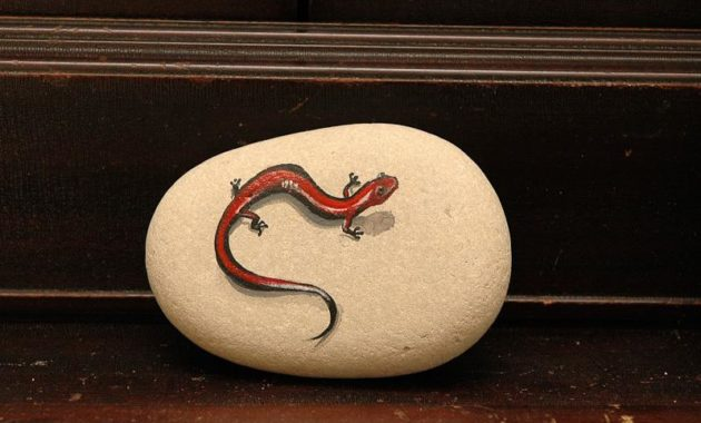 wonderful smooth rocks for painting #animalpaintedrock #paintedrock #rockpainting #animalstoneart