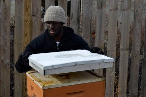 Brent Wesley checking on one of the hives at his apiary in Highland Square.