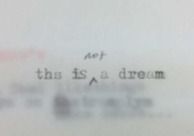 This is not a dream. Image: Laura Rosser