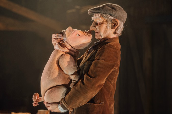 Babe and Ben Ingles (Farmer Hogget) in Babe, The Sheep-Pig. Photo Credit David Monteith-Hodge)
