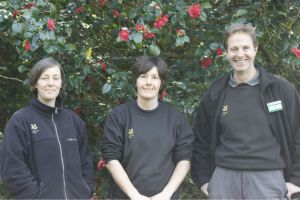 Gardeners Stacey Toppin, Juliet Stubbington and Colin Clark in front of prize-winning camellia Jingle Bells
