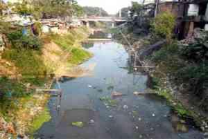 Basia River