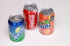 fructose-fat-diabetes