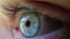 Test for diabetes blindness and amputation